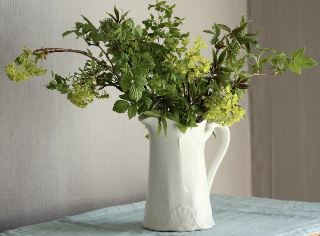 Grønne planter til Bukettfyll